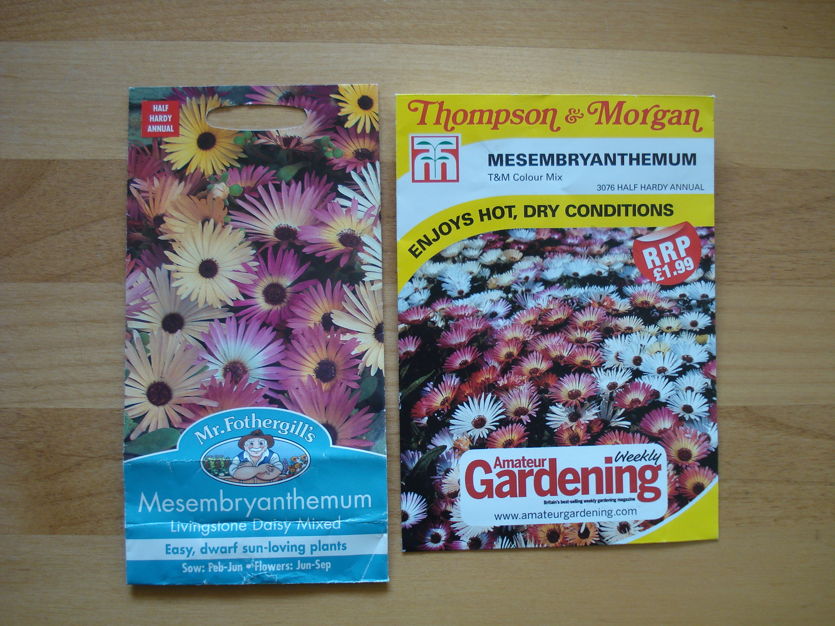 ... a free packet of livingstone daisy seeds with Amateur Gardening magazine ...