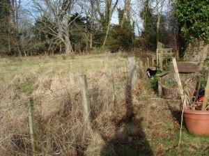 Garden Blog 2013 038